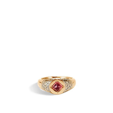 AAxJH Classic Chain Pinky Signet Ring in 18K Gold with Gemstone